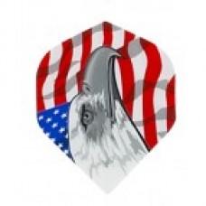 Eagle USA Metro Flight